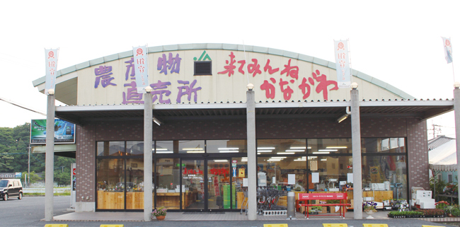 来てみんね・かながわ(田川市)